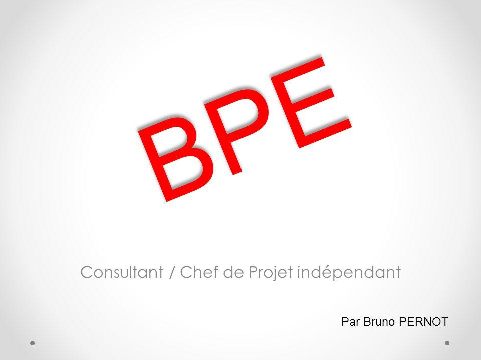 Consultant / Chef de Projet indépendant BPE Par Bruno PERNOT