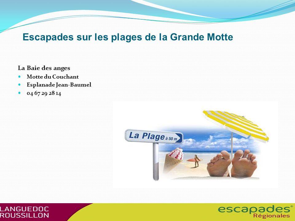 Escapades sur les plages de la Grande Motte Les Bikinis Motte du Couchant Devant la résidence les Jardins de la mer Accès plage n°19 04 67 56 10 40 ht