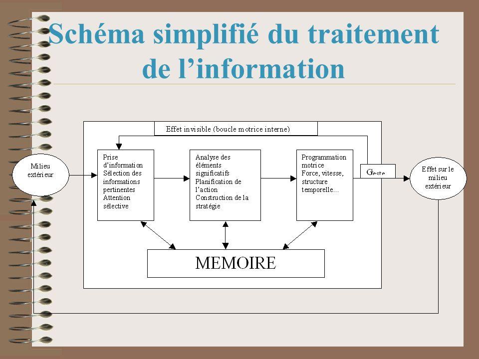 Schéma simplifié du traitement de linformation