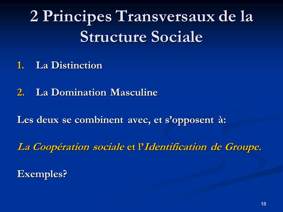 18 2 Principes Transversaux de la Structure Sociale 1.La Distinction 2.La Domination Masculine Les deux se combinent avec, et sopposent à: La Coopération sociale et lIdentification de Groupe.