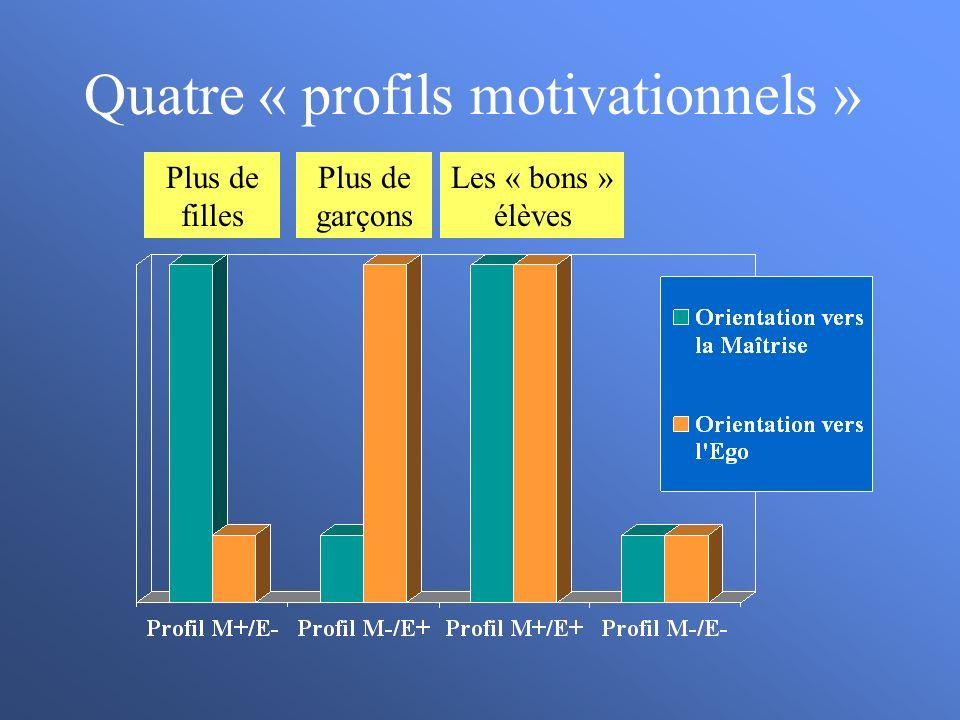Quatre « profils motivationnels » Les « bons » élèves Plus de garçons Plus de filles