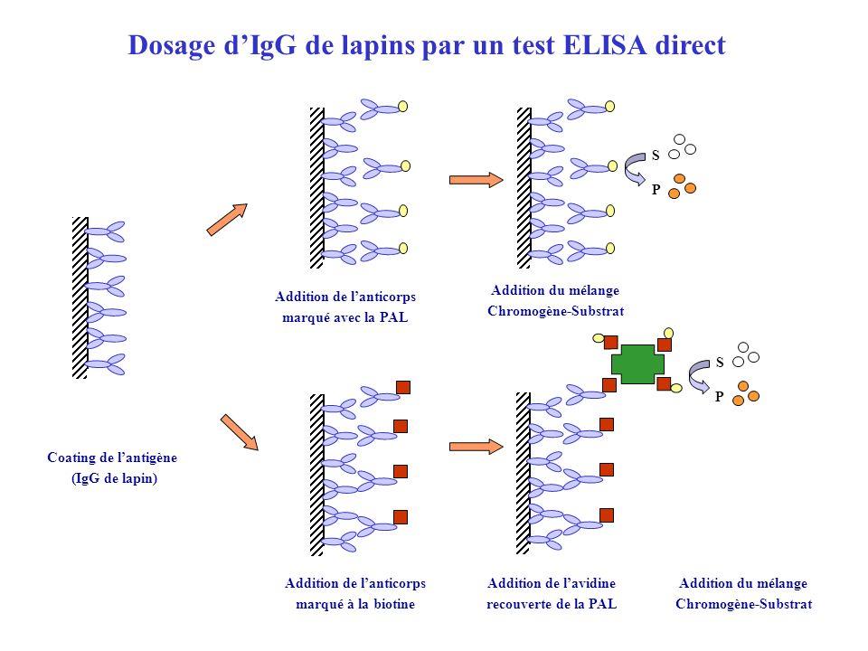 Cupule Coatée avec anticorps spécifique Présence dantigène Absence dantigène Distribution des témoins et des échantillons S P S P Addition du mélange substrat-chromogène Distribution du conjugué HRP Principe du kit utilisé pendant la partie pratique