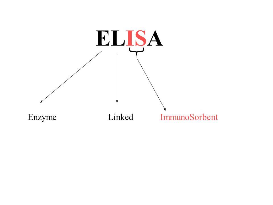 Linked Enzyme ELISA