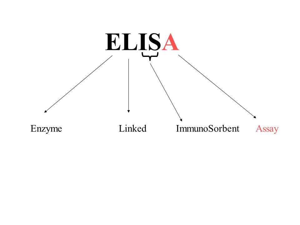 ImmunoSorbent EnzymeLinked ELISA