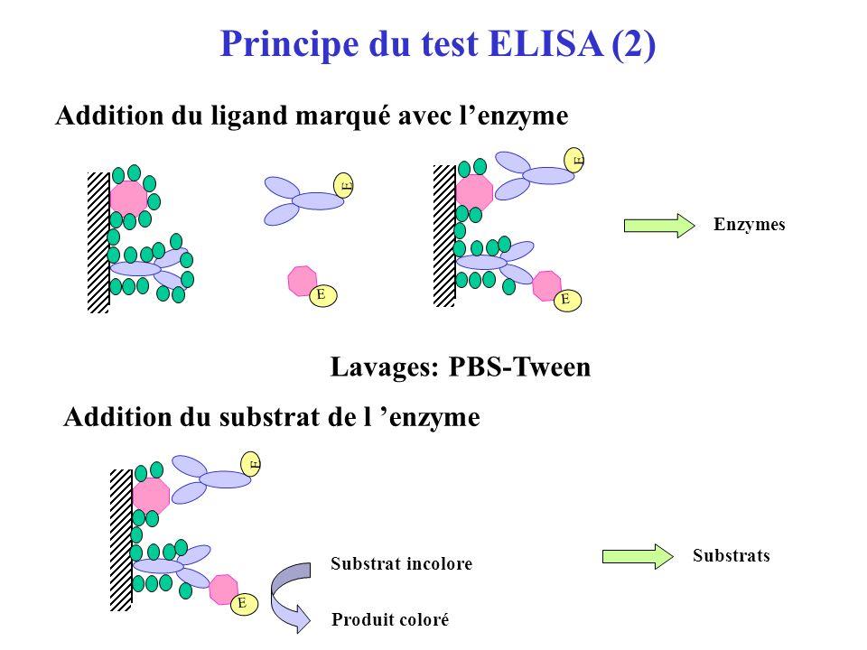 Principe du test ELISA (1) Coating de l Ag ou de lAc Saturation Support Tampon de coating Saturation Lavages