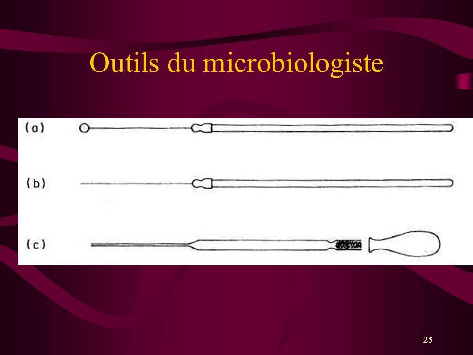 25 Outils du microbiologiste