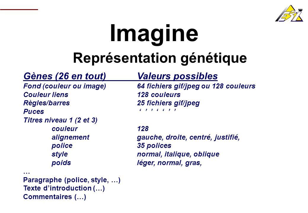 Imagine Représentation génétique Gènes (26 en tout) Valeurs possibles Fond (couleur ou image) 64 fichiers gif/jpeg ou 128 couleurs Couleur liens128 co