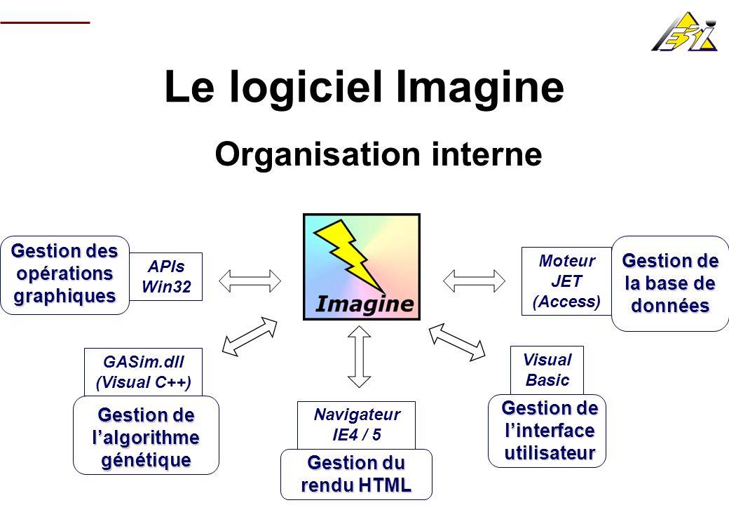 Le logiciel Imagine Organisation interne Gestion de lalgorithme génétique Gestion de linterface utilisateur Gestion du rendu HTML Gestion des opératio