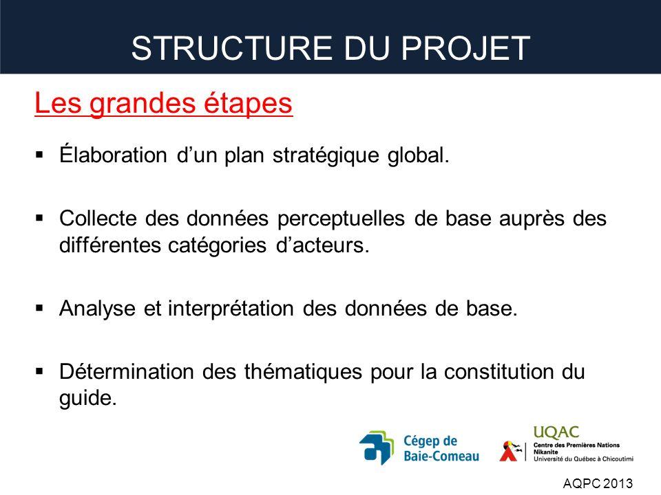 STRUCTURE DU PROJET Les grandes étapes Élaboration dun plan stratégique global.