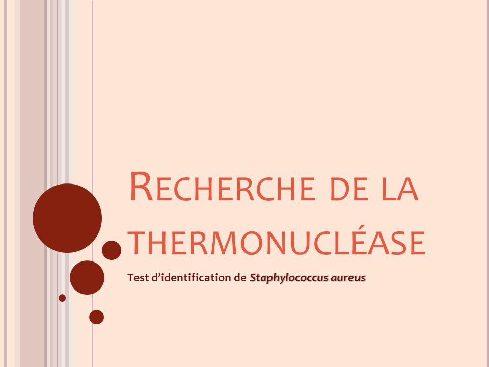 R ECHERCHE DE LA THERMONUCLÉASE Staphylococcus aureusTest didentification de Staphylococcus aureus