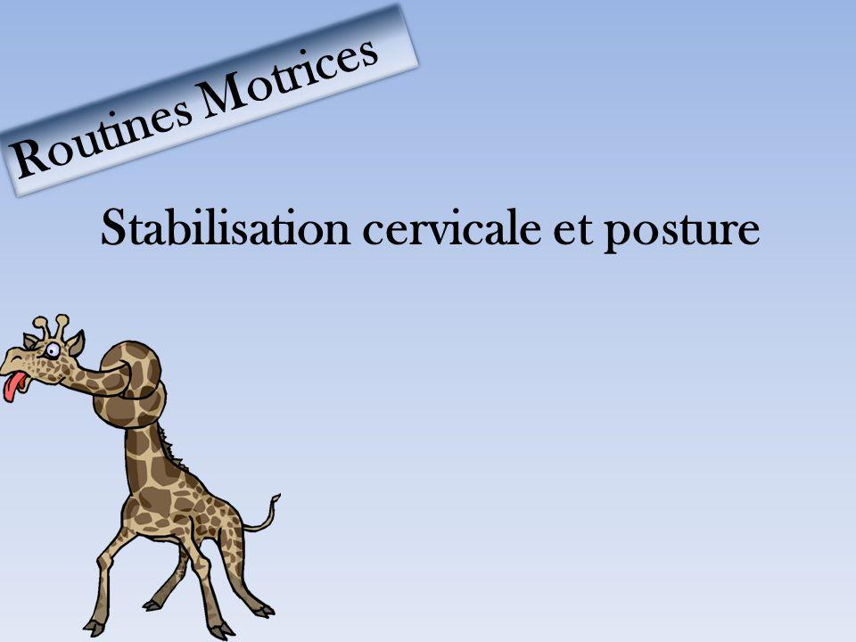 Stabilisation cervicale et posture Routines Motrices