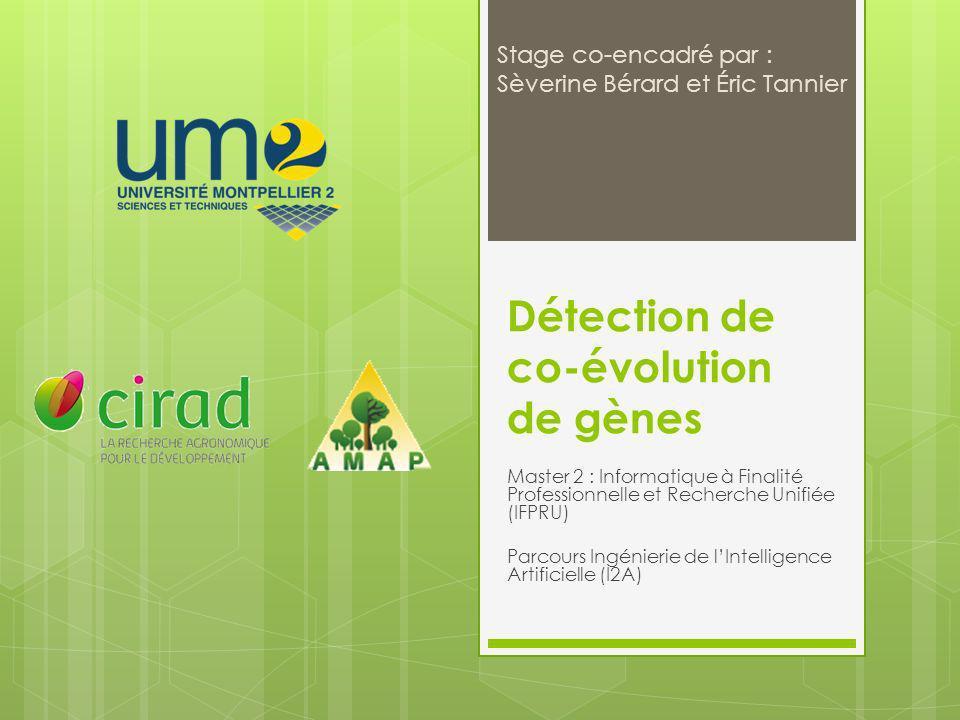 Détection de co-évolution de gènes 12/09/2011 22/40 Algorithme de Fitch 1 0 0 0 1,0 0 0 0 0 Présence ou absence dadjacence Fonction de coût c 1 et c 0 Appel aux racines