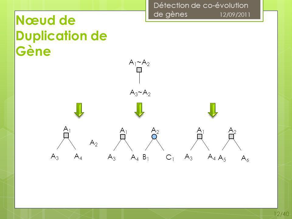 Détection de co-évolution de gènes 12/09/2011 12/40 Nœud de Duplication de Gène A 1 ~A 2 A 3 ~A 2 A1A1 A2A2 A1A1 A2A2 A1A1 A2A2 A3A3 A4A4 A3A3 A4A4 A3A3 A4A4 A5A5 A6A6 B1B1 C1C1