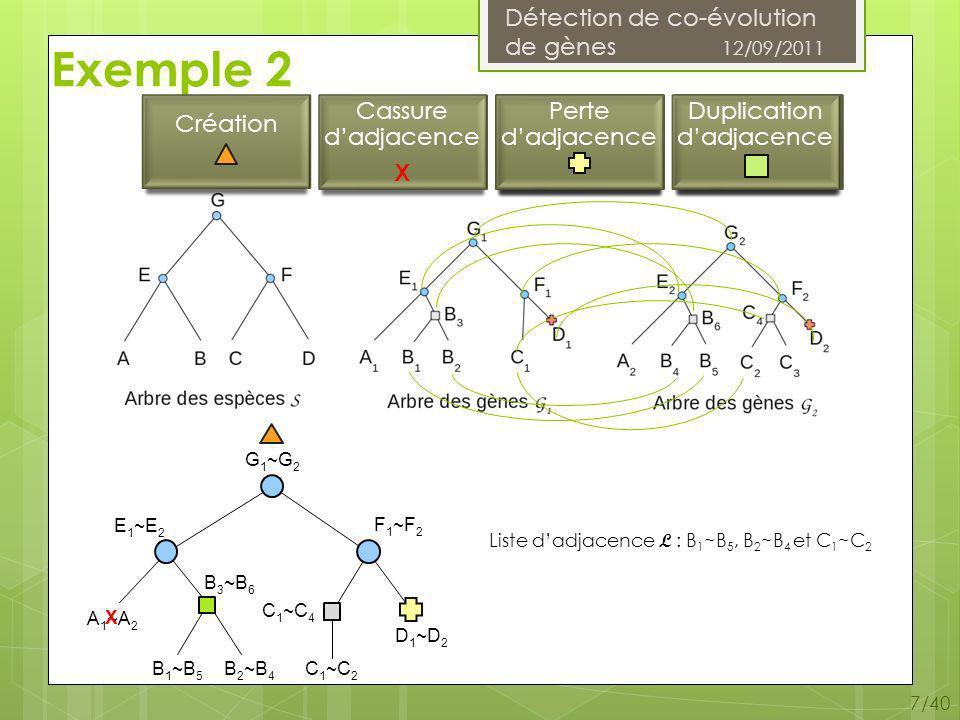 Détection de co-évolution de gènes 12/09/2011 7/40 Exemple 2 Duplication de gène Perte de gène Liste dadjacence L : B 1 ~B 5, B 2 ~B 4 et C 1 ~C 2 B 1 ~B 5 B 2 ~B 4 C 1 ~C 2 D 1 ~D 2 B 3 ~B 6 C 1 ~C 4 F 1 ~F 2 E 1 ~E 2 G 1 ~G 2 A 1 ~A 2 X Perte dadjacence Duplication dadjacence Cassure dadjacence X Création