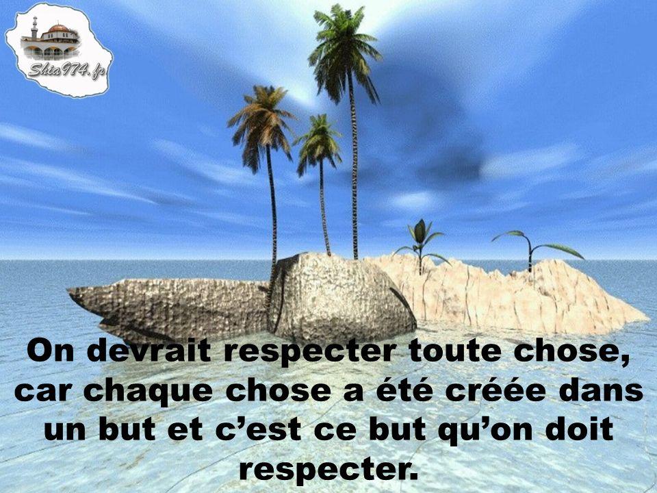 On devrait respecter toute chose, car chaque chose a été créée dans un but et cest ce but quon doit respecter.