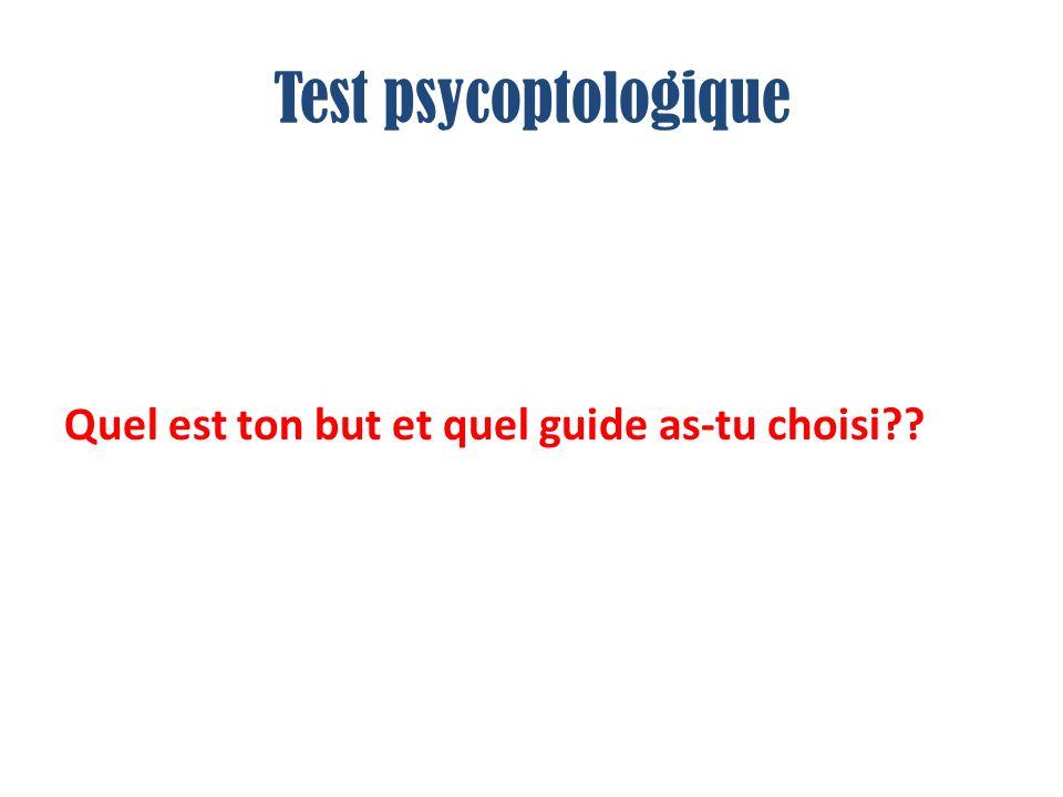 Test psycoptologique Quel est ton but et quel guide as-tu choisi??
