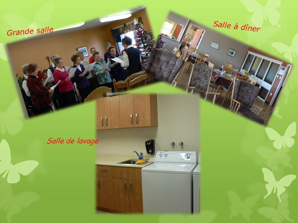 Pièces communes: Salle à manger située côté fleuve Salon avec fauteuils, berceuses, télé plasma, lecteur DVD, magnétoscope, comptoir de livres géré par la responsable de la bibliothèque municipale.