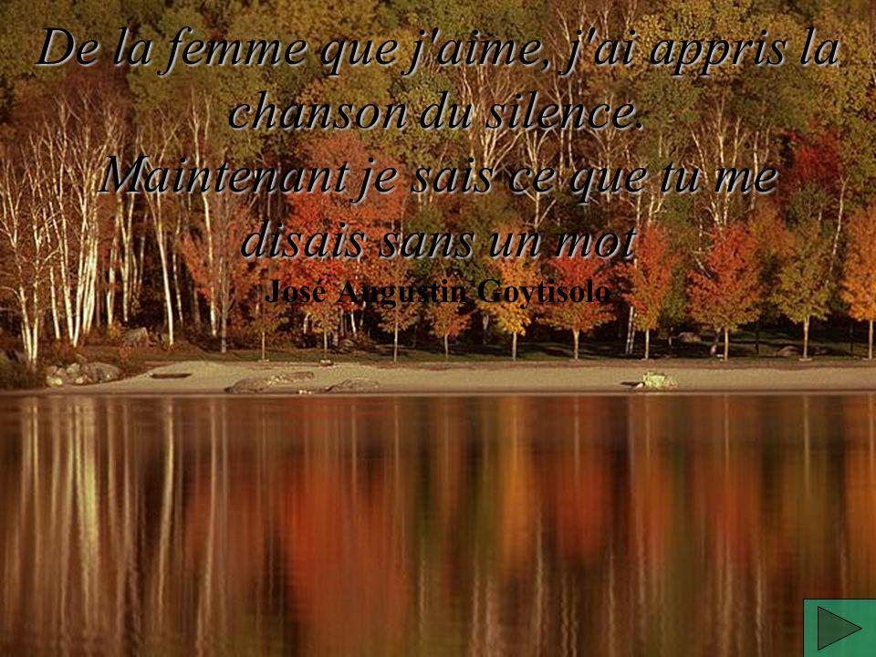 De la femme que j aime, j ai appris la chanson du silence.