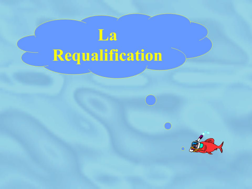 La requalification 1 - Rappel de la réglementation 2 - Protocole de requalification 3 - Critères de jugement de la visite 4 - Critères de jugement de la requalification 5 - But de la requalification 6 - Exemple de circuit commercial 7 - Matérialisation de la requalification 8 - Les échanges standards