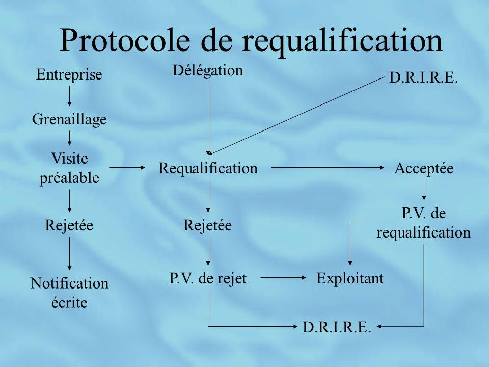 Protocole de requalification Entreprise Grenaillage Visite préalable Rejetée Notification écrite Requalification Délégation D.R.I.R.E.