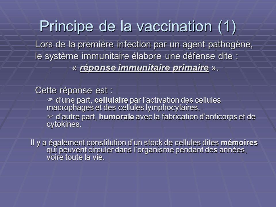 Principe de la vaccination (1) Lors de la première infection par un agent pathogène, le système immunitaire élabore une défense dite : « réponse immun