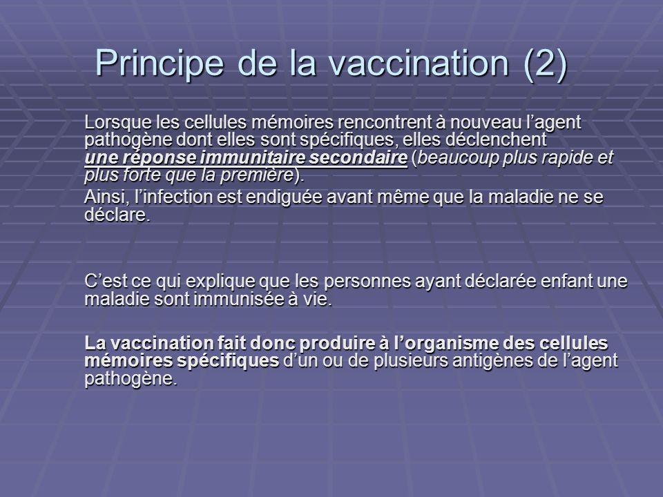 Principe de la vaccination (2) Lorsque les cellules mémoires rencontrent à nouveau lagent pathogène dont elles sont spécifiques, elles déclenchent une