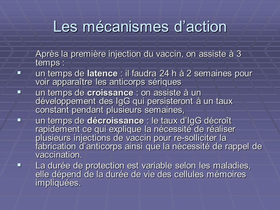 Les mécanismes daction Après la première injection du vaccin, on assiste à 3 temps : un temps de latence : il faudra 24 h à 2 semaines pour voir appar