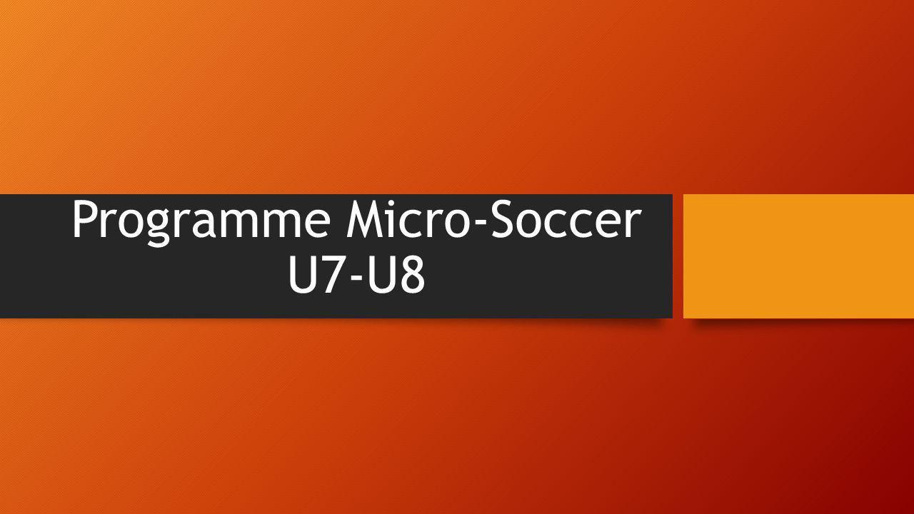 Programme Micro-Soccer U7-U8