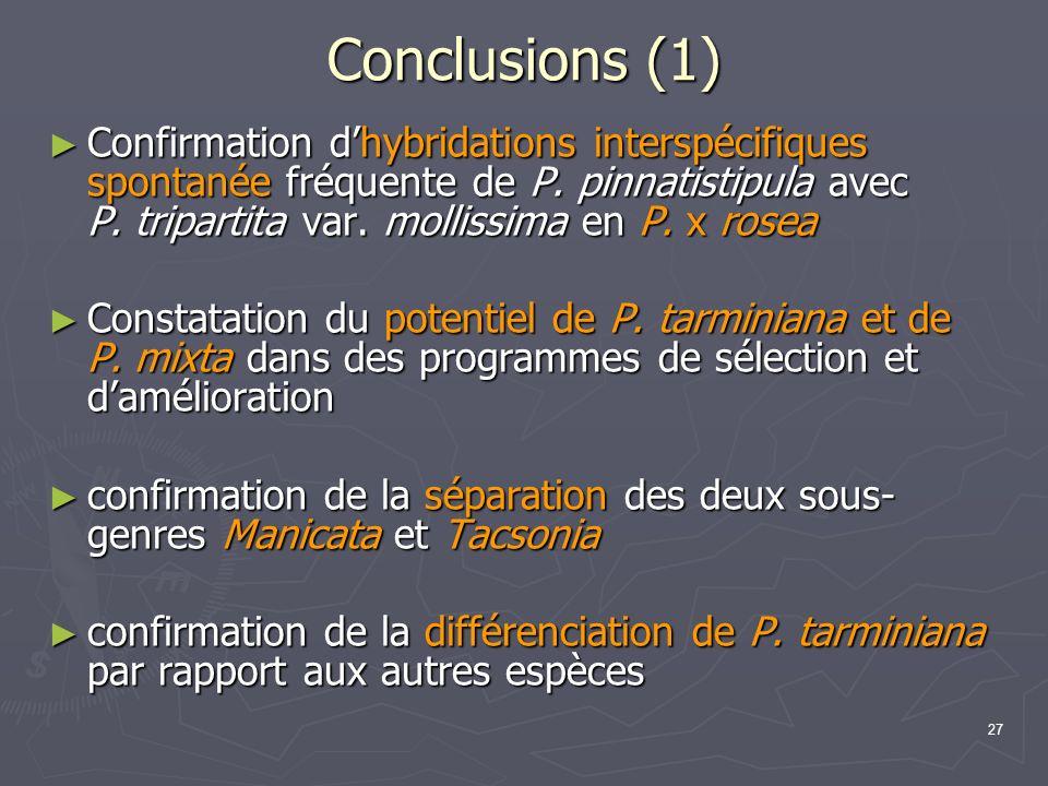 27 Conclusions (1) Confirmation dhybridations interspécifiques spontanée fréquente de P. pinnatistipula avec P. tripartita var. mollissima en P. x ros