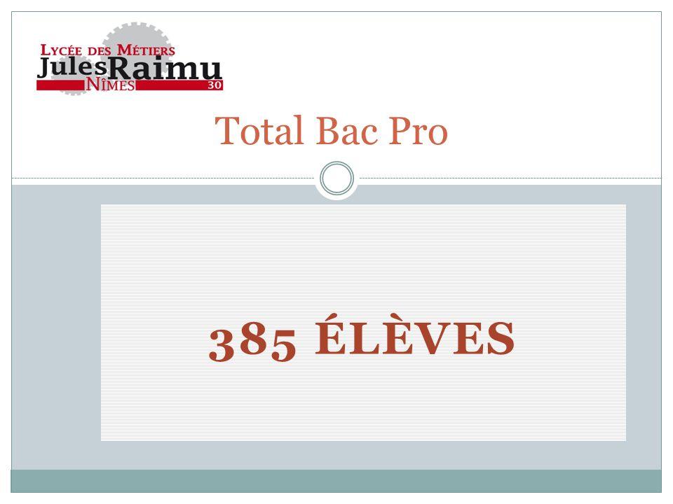 385 ÉLÈVES Total Bac Pro