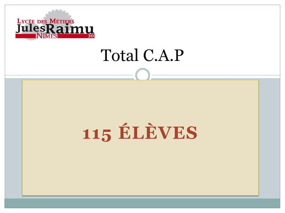 115 ÉLÈVES Total C.A.P