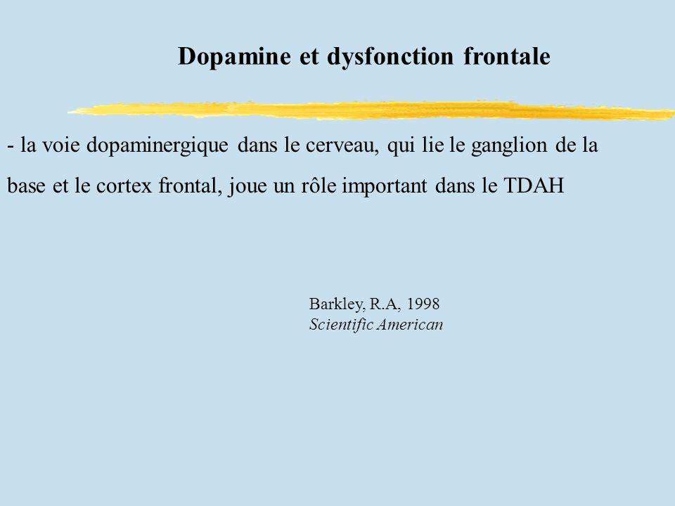 Dopamine et dysfonction frontale - la voie dopaminergique dans le cerveau, qui lie le ganglion de la base et le cortex frontal, joue un rôle important dans le TDAH - Barkley, R.A, 1998 Scientific American