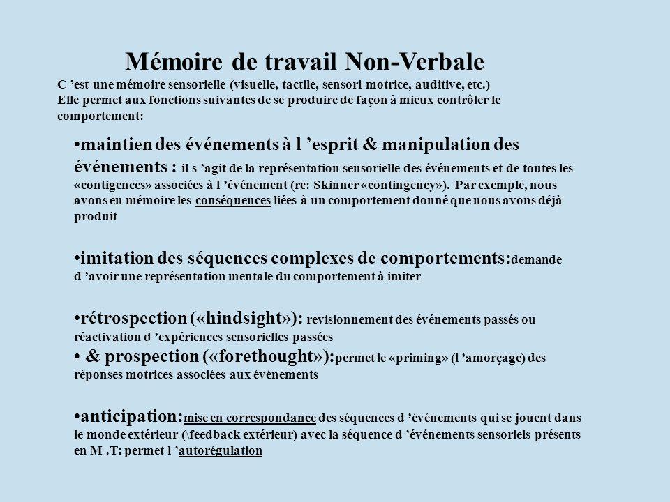 maintien des événements à l esprit & manipulation des événements : il s agit de la représentation sensorielle des événements et de toutes les «contige