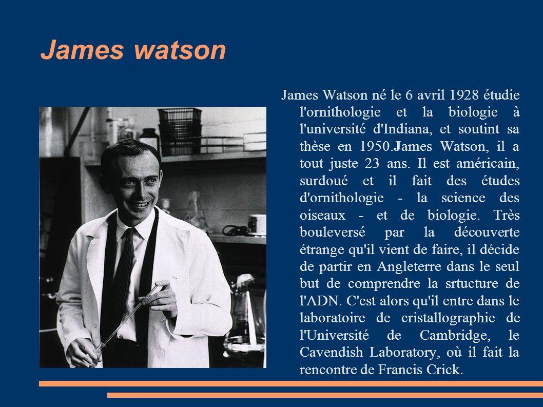 James watson James Watson né le 6 avril 1928 étudie l ornithologie et la biologie à l université d Indiana, et soutint sa thèse en 1950.James Watson, il a tout juste 23 ans.
