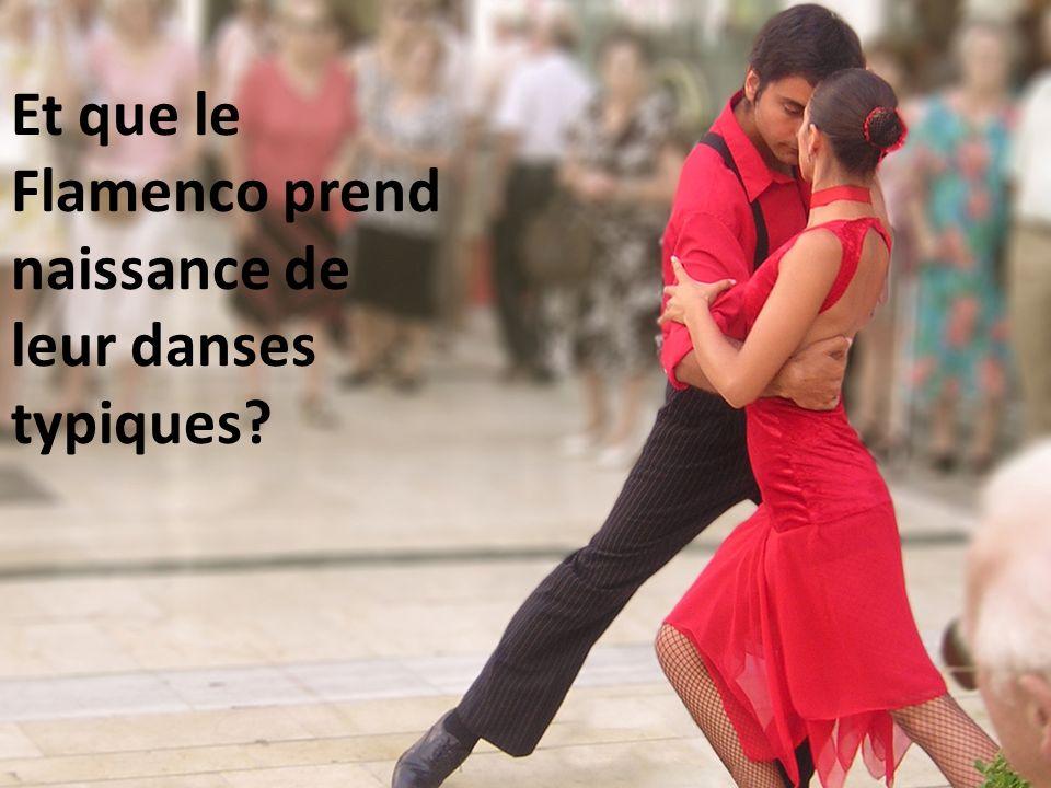 Et que le Flamenco prend naissance de leur danses typiques?