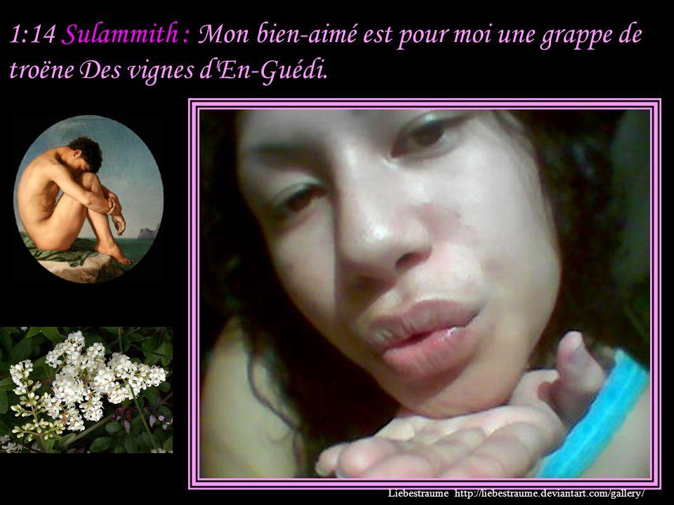 1:13 Sulammith : Mon bien-aimé est pour moi un bouquet de myrrhe, Qui repose entre mes seins.