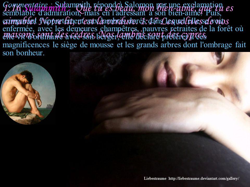 1:15 Salomon : Que tu es belle, mon amie, que tu es belle! Tes yeux sont des colombes. Liebestraume http://liebestraume.deviantart.com/gallery/