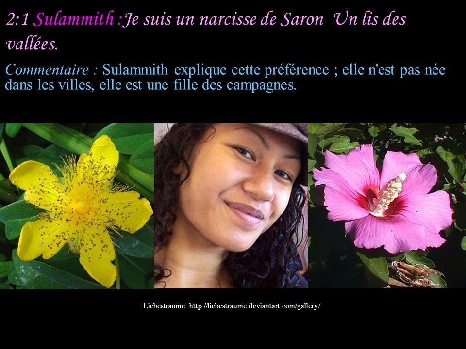 1:16 Sulammith : Que tu es beau, mon bien-aimé, que tu es aimable.