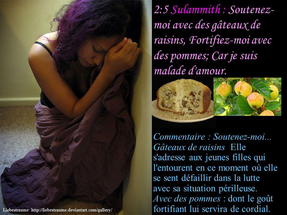 2:4 Sulammith : Il m'a fait entrer dans la maison du vin; Et la bannière qu'il déploie sur moi, c'est l'amour. Commentaire : Il m'a fait entrer dans l