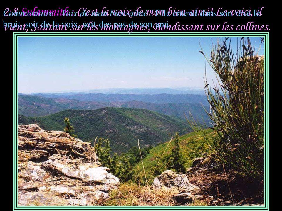2:7 Sulammith : Je vous en conjure, filles de Jérusalem, Par les gazelles et les biches des champs, Ne réveillez pas, ne réveillez pas l amour, Avant qu elle le veuille.