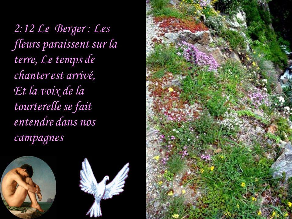 2:11 Le Berger : Car voici, l'hiver est passé; La pluie a cessé, elle s'en est allée.