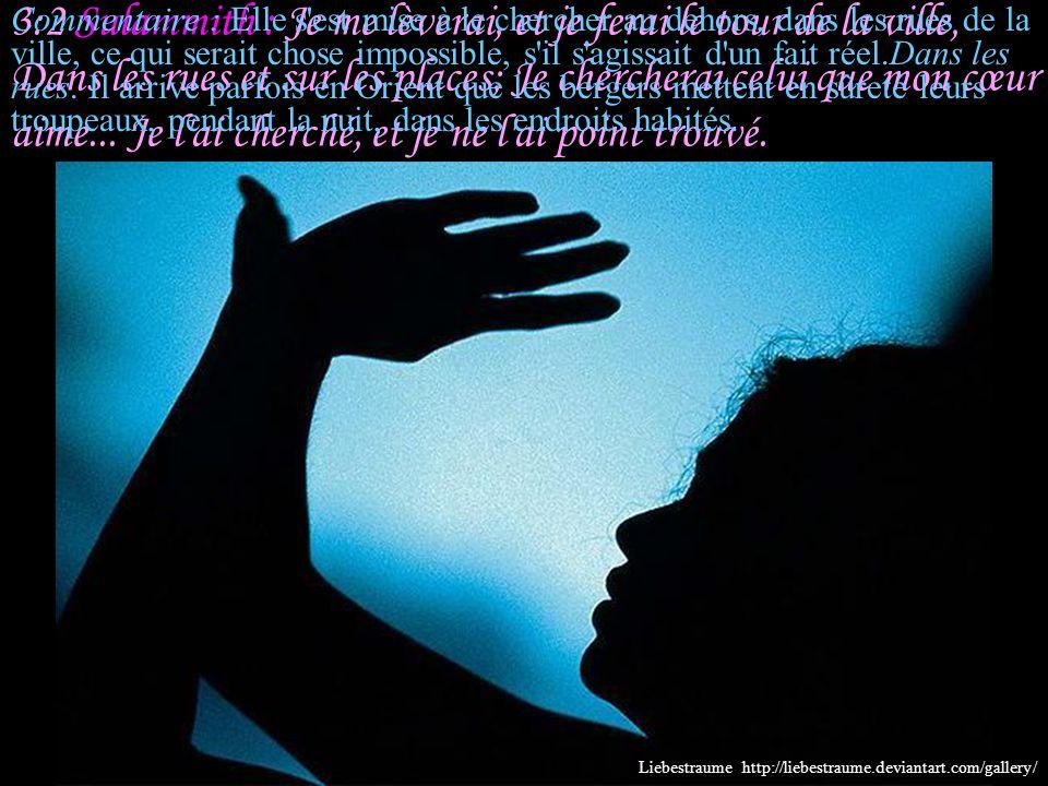 3:1 Sulammith : Sur ma couche, pendant les nuits, J'ai cherché celui que mon cœur aime; Je l'ai cherché, et je ne l'ai point trouvé... Commentaire : S