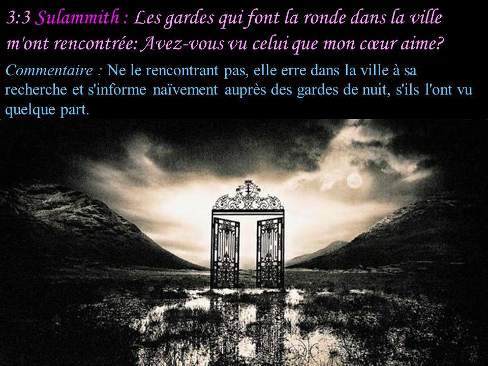 3:2 Sulammith : Je me lèverai, et je ferai le tour de la ville, Dans les rues et sur les places; Je chercherai celui que mon cœur aime...