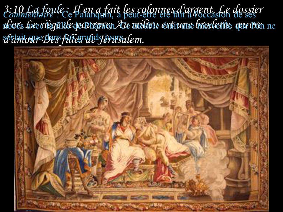 3:9 La foule : Le roi Salomon s'est fait une litière De bois du Liban.