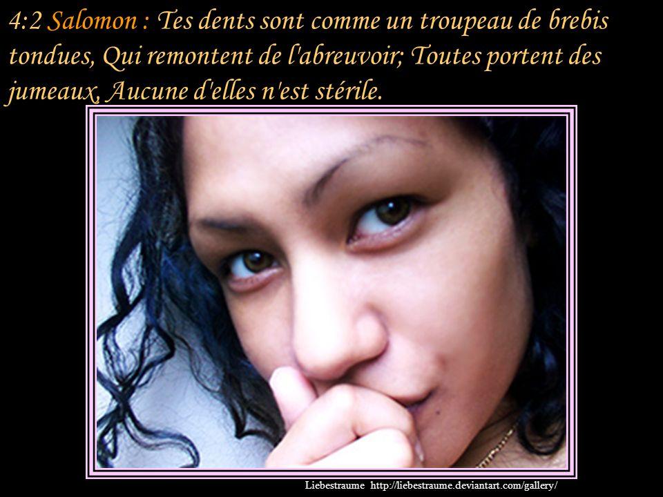 4:1 Salomon : Que tu es belle, mon amie, que tu es belle! Tes yeux sont des colombes, Derrière ton voile. Tes cheveux sont comme un troupeau de chèvre