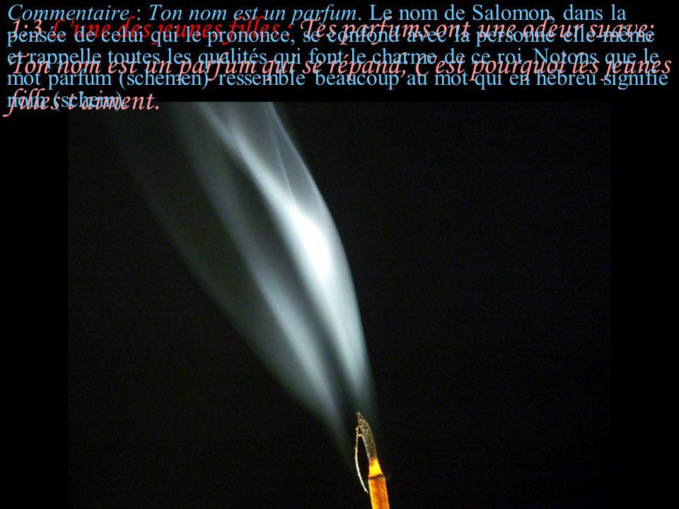 5:12 Sulammith : Ses yeux sont comme des colombes au bord des ruisseaux, Se baignant dans le lait,Reposant au sein de l abondance.