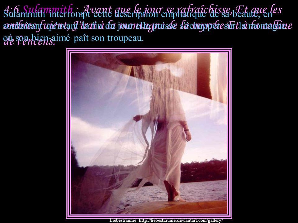 4:5 Salomon : Tes deux seins sont comme deux faons, Comme les jumeaux d'une gazelle, Qui paissent au milieu des lis. Liebestraume http://liebestraume.