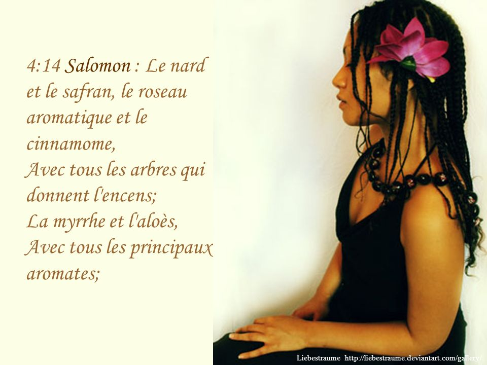 4:13 Salomon : Tes jets forment un jardin, où sont des grenadiers, Avec les fruits les plus excellents, Les troënes avec le nard; Liebestraume http://liebestraume.deviantart.com/gallery/
