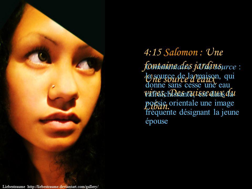 4:14 Salomon : Le nard et le safran, le roseau aromatique et le cinnamome, Avec tous les arbres qui donnent l encens; La myrrhe et l aloès, Avec tous les principaux aromates; Liebestraume http://liebestraume.deviantart.com/gallery/