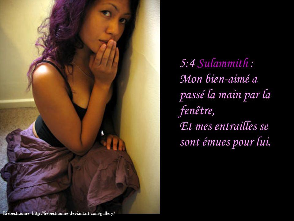 5:3 Sulammith : J ai ôté ma tunique; comment la remettrais-je.